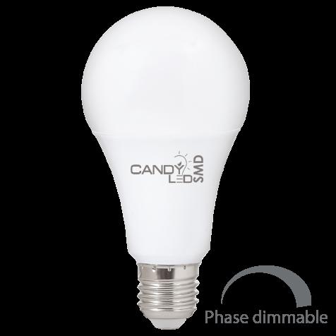 LAMPE LED CANDYLED 12W E27